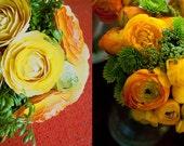 First Wedding Anniversary Bouquet Re-imagining