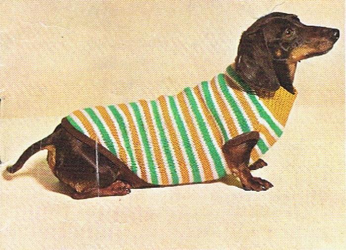 Dog Sweater Knitting Pattern 5 Types Vintage PDF (T213