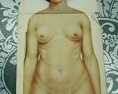 Antique Anatomy Dissection Manikin Female