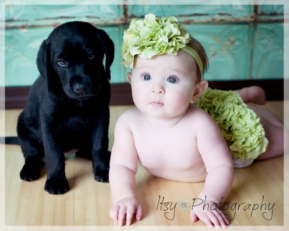 Diaper Cover Photo Prop Green Hydrangea Diaper Cover Bloomer and Headband Set Newborn Girl Photo Prop, Summer Photo Prop, Green Diaper Cover