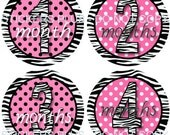 Baby Month Stickers Plus FREE Gift Monthly Baby Milestone Stickers   Zebra Pink Polka Dots Number Picture Stickers 1-12 Months  - Shower