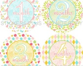 Baby Month Stickers Plus FREE Gift Girl Butterfly Flower Flowers PRECUT Stickers Photo Prop Baby Milestone 1-12 or 13-24 Months