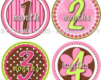 Monthly Milestone Baby Stickers Baby Girl Month Stickers Fun Girl II Pink Brown Green Dots Stripes Flowers 1-12 Months Baby Shower Gift