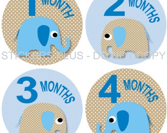 Monthly Baby Boy Stickers Plus FREE Gift PRECUT Bodysuit Milestone Stickers Baby Age Stickers Jungle Zoo Elephant Blue Brown Dots 1-12 m