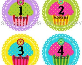 Baby Month Stickers Plus FREE Gift Girl Milestone Stickers Cupcake Bright Dots Shower Gift PRECUT Baby Age Monthly Stickers Photo Prop