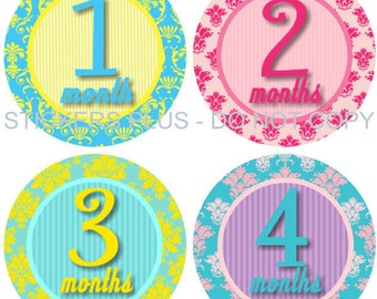 Baby Month Stickers Plus FREE Gift Baby Girl Monthly Age Stickers Milestone Stickers Bright Damask Pink Purple Yellow Blue