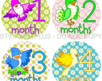 Baby Month Stickers Plus FREE Gift Girl Colorful Birds and Daisy Flowers 1-12 Months Photo Prop Monthly Baby Age Stickers