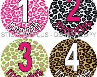 Baby Month Stickers Plus FREE Gift Monthly Baby Girl Milestone Stickers Cheetah Leopard Baby Shower Gift Monthly Baby Age Stickers