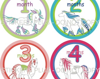 Baby Month Stickers   Baby Girl Monthly Stickers Milestone  Fancy Drum Horses Aqua Peach Pink Green Reds Blues Lilac 1-12 m