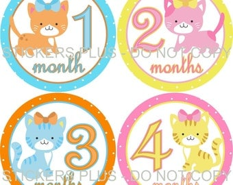 Baby Month Stickers Plus FREE Gift Girl Kittens Cat Baby Shower Gift PRECUT Bodysuit Baby Stickers Monthly Baby Age Milestone Stickers