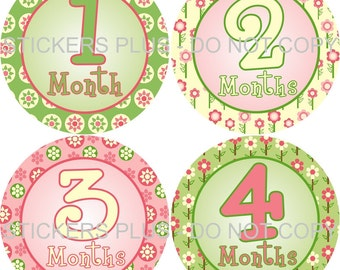 Baby Month Stickers Plus FREE Gift Girl Flower Lime Green Pink Baby Shower Gift PRECUT Bodysuit Monthly Stickers Baby Age Stickers