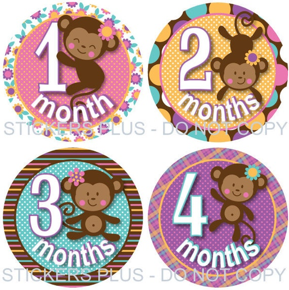 Baby Girl Month Stickers  Monkey Pink Lilac Brown Blue Yellow Dots Stripes Flowers Plaid - 1-12 or 13-24 M Photo Prop