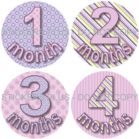 Baby Month Stickers Plus FREE Gift Girl Monthly Milestone Stickers Lilac Purple All Different Baby Age Stickers 1-12 or 13-24 Months