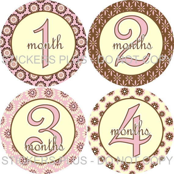 Baby Month Stickers Plus FREE Gift Monthly Baby Girl Stickers Brown Pink Cream Flower Baby Shower PRECUT Baby Age Stickers Photo Prop