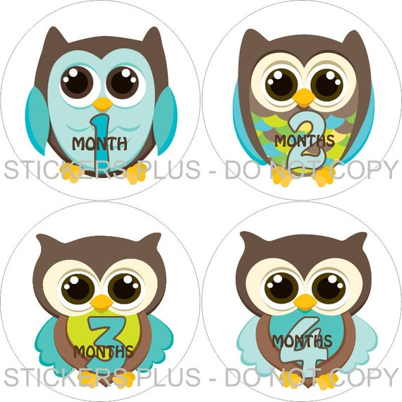 Baby Month Stickers Monthly Baby Milestone Stickers PRECUT Bodysuit Stickers Monthly Stickers Plus FREE Gift Boy Owl Aqua Blue Brown II