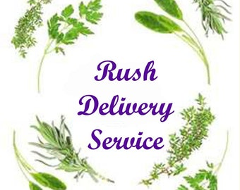 Rush Delivery Service