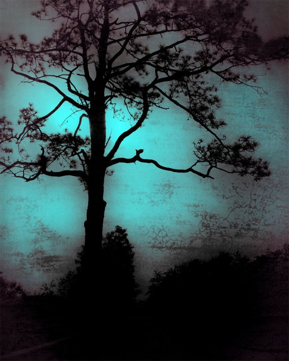 Fine Art Photography Print - blue, dark, mood, mysterious, tree, lonely, backlit, silhouette, landscape, nature - Moody Blue