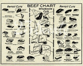 Vintage beef butcher chart, meat illustration 9x12