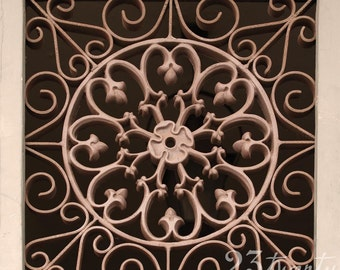 New Orleans French Quarter architectural medallion grate photograph 12x12