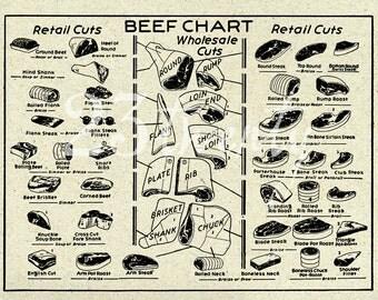 Vintage beef butcher chart, meat illustration 18x24