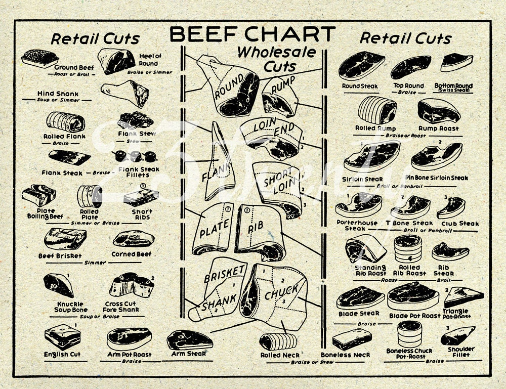 Vintage Beef Butcher Chart Meat Illustration 18x24 By 23twenty