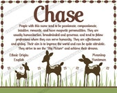 Willow Deer- Name Meaning Kids Room Wall Print 8x10 Cardstock - Any Colors
