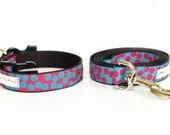 Dog Collar & Leash COMBO