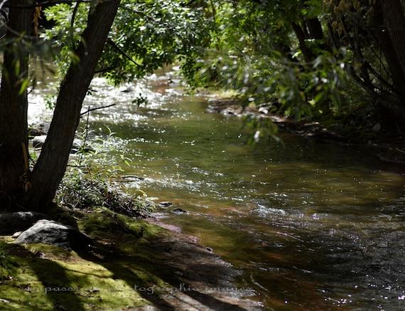 Greens of Summer  -  Boulder Creek Fine Art Photography Print
