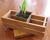 Seedling Tray Plant Tray in solid cherry