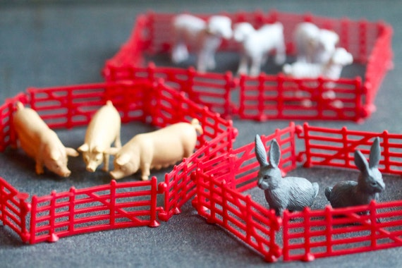 Farm Animals and Red Fences - Miniature Pigs Bunnies and Goats Rubber