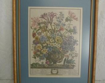 Robert Furber October Flowers Botanical Litograph Framed