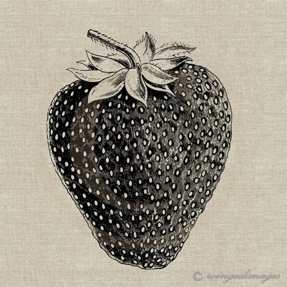 Strawberry. Instant Download Digital Image No.81 Iron-On Transfer to Fabric (burlap, linen) Paper Prints (cards, tags)