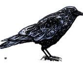 "Raven  Scratch Board Print approx 6X8"""