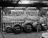Dakotah Vineyard 8x10 Print