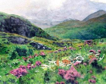Scotland - Scottish Highlands Heather and  Mountains- Giclée Print