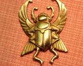 Winged Scarab Beetles (2 pc)