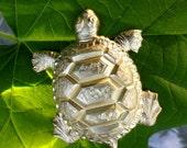 Big Box Turtle Charm (1 pc)