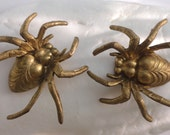 3D Brass Spiders ( 1 pc)