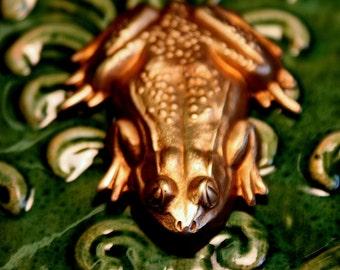 Cool Big Frog Ornament  (1 pc)