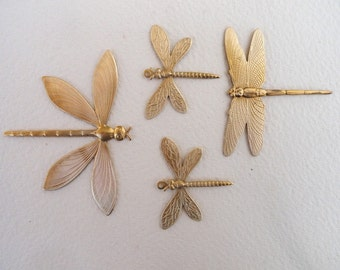 Dragonflies with Rings