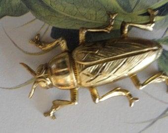 Medium Brass Beetles (1 pc )