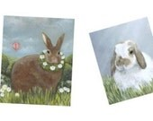 Rabbit Note Card Variety Pack, Free Shipping
