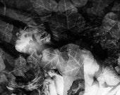 "Nude, Texture, Leaves, Dreamy - ""Temple Sleep"" - 5x7"