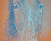OOAK Horse Head Drawing