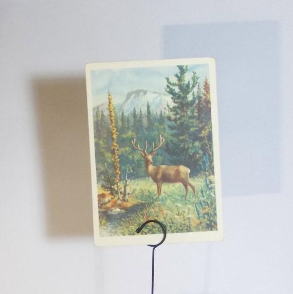 Vintage Semenov (Siberian stag) Postcard - 1957