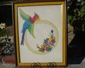 Angry Parrot needlepoint framed Art