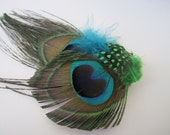 Peacock feather hairclip