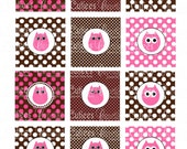 Owl Girl Hot Pink  Brown Birthday Digital Cupcake Toppers  2 Inch Circle Tags PRINTABLE