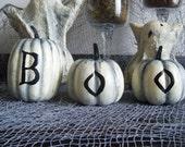 Halloween spooky BOO pumpkins