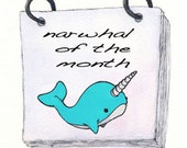 Narwhal of the Month Club - 3 month subscription - size SMALL